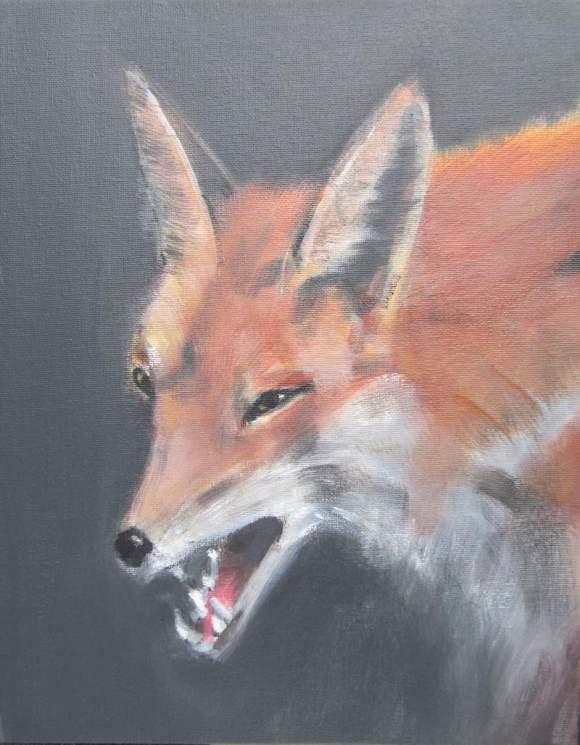 Fox 800