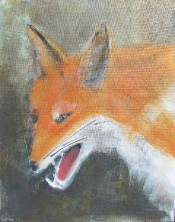 Fox #11 800